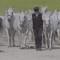 'Perfect Horse' en 'Vleesverlangen' in Ketelhuis op 18 april